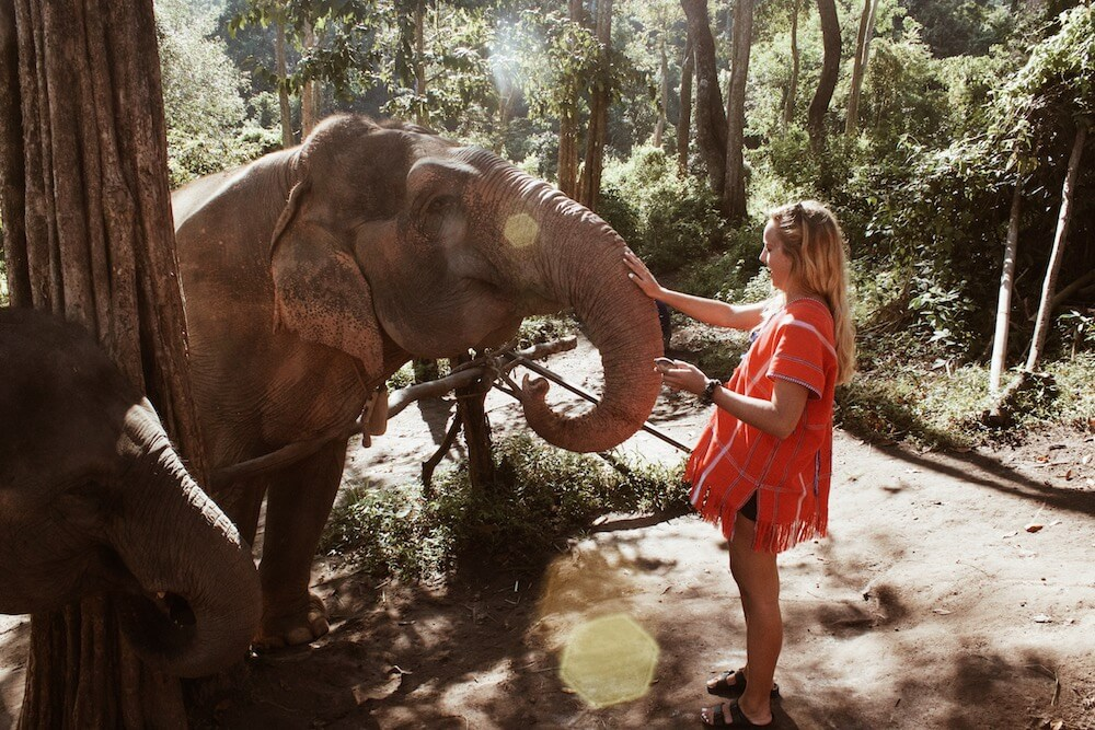 Kelsey, teacher in Thailand, with elephant