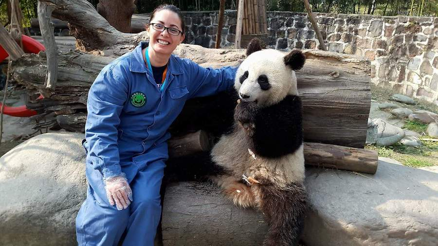 English teacher in China with panda