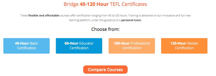 Bridge Job Board TEFL Certification Info