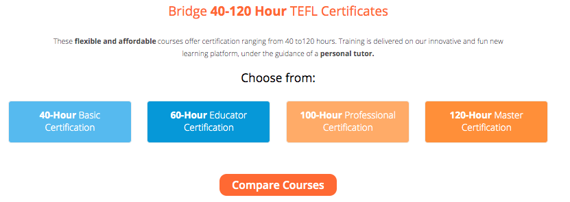 Bridge Job Board TEFL Certification Info