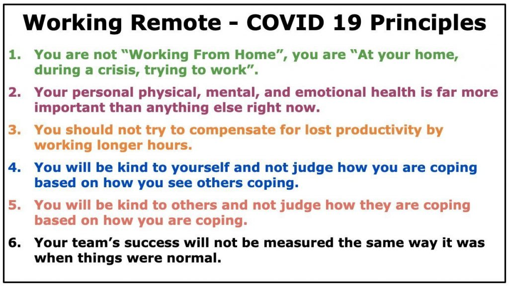 Principles for Working Remotely During Covid
