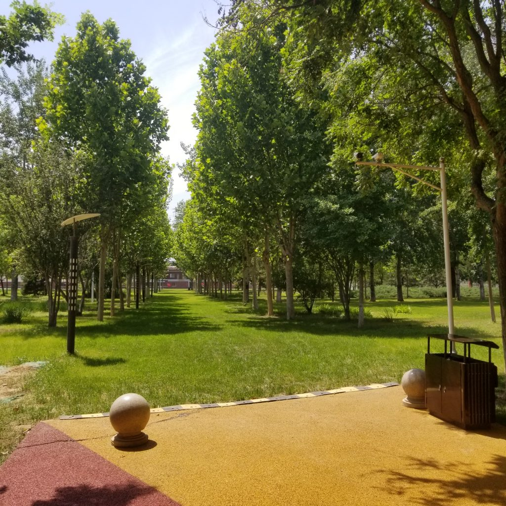 An empty park in Beijing during the COVID-19 crisis